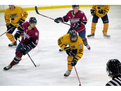 Jr. Blues Fall to Ice Dogs